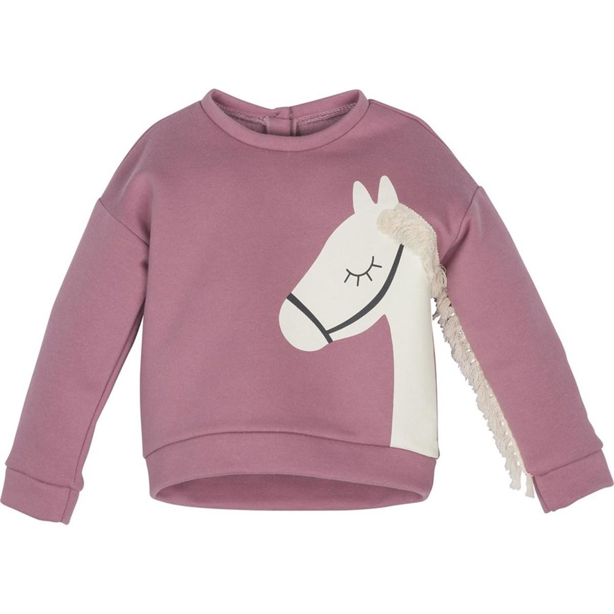 12447 Sweatshirt 1