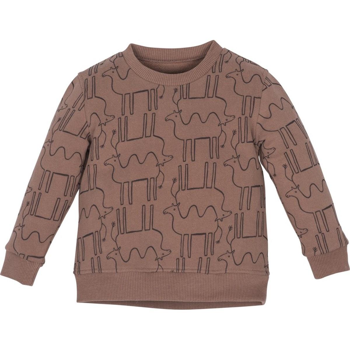 12623 Sweatshirt 1