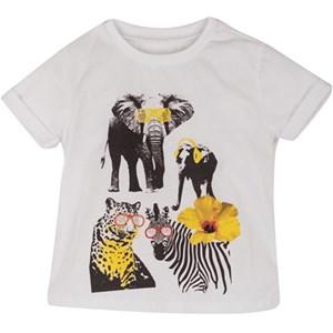 8702 Tshirt ürün görseli