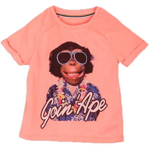 8715 Tshirt 2