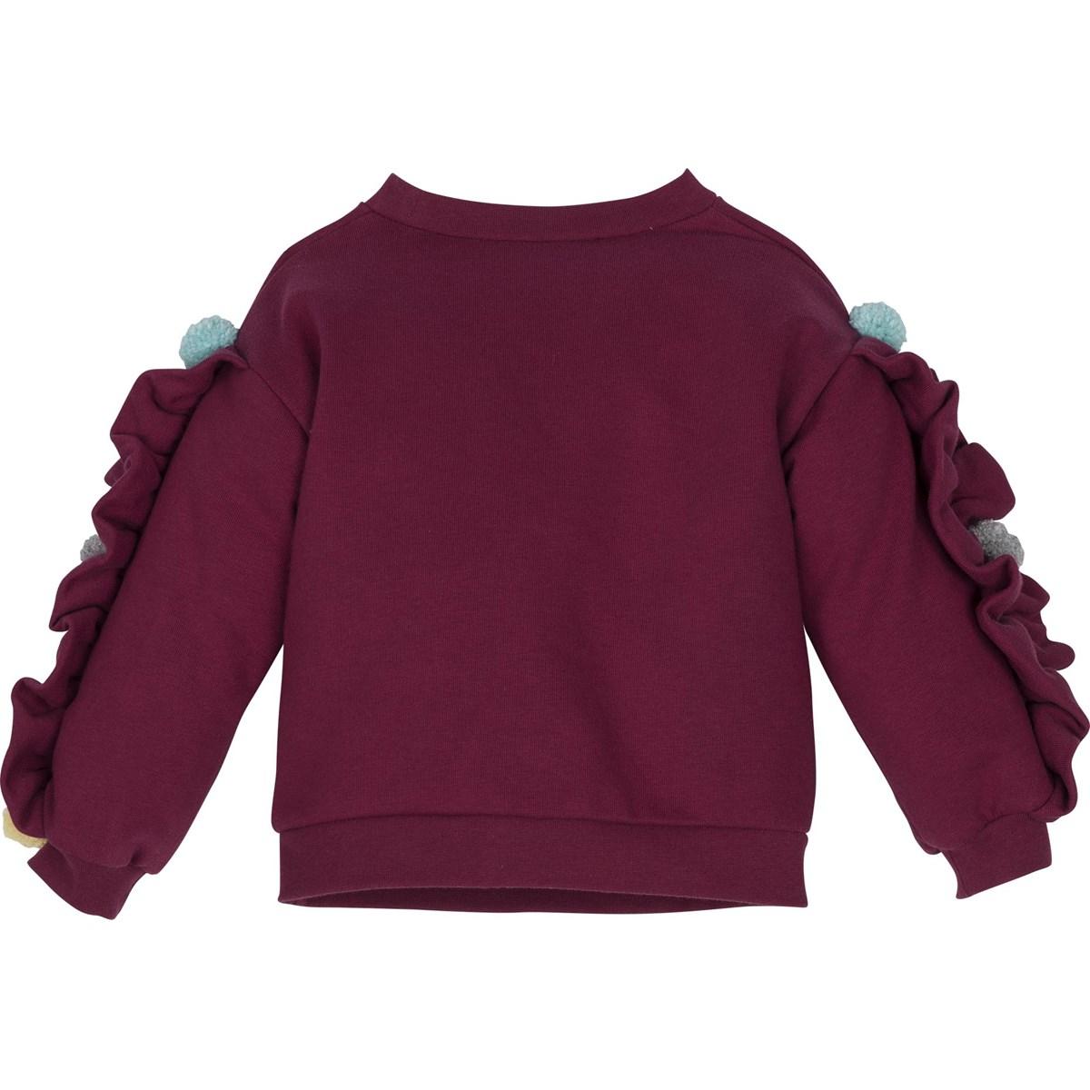 12394 Sweatshirt 2