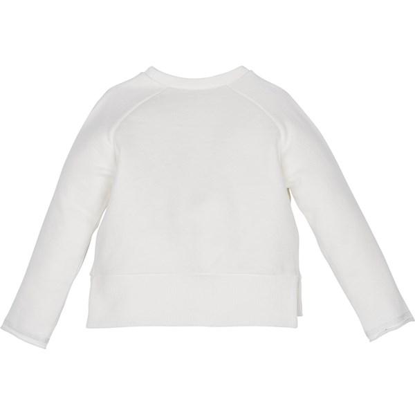 12413 Sweatshirt 3