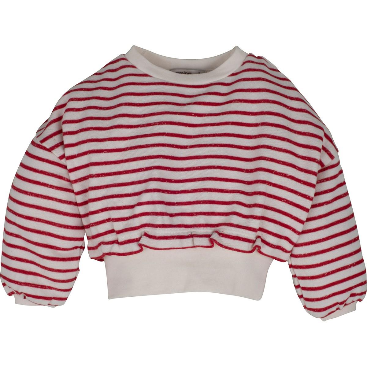 14176 Sweatshirt 1