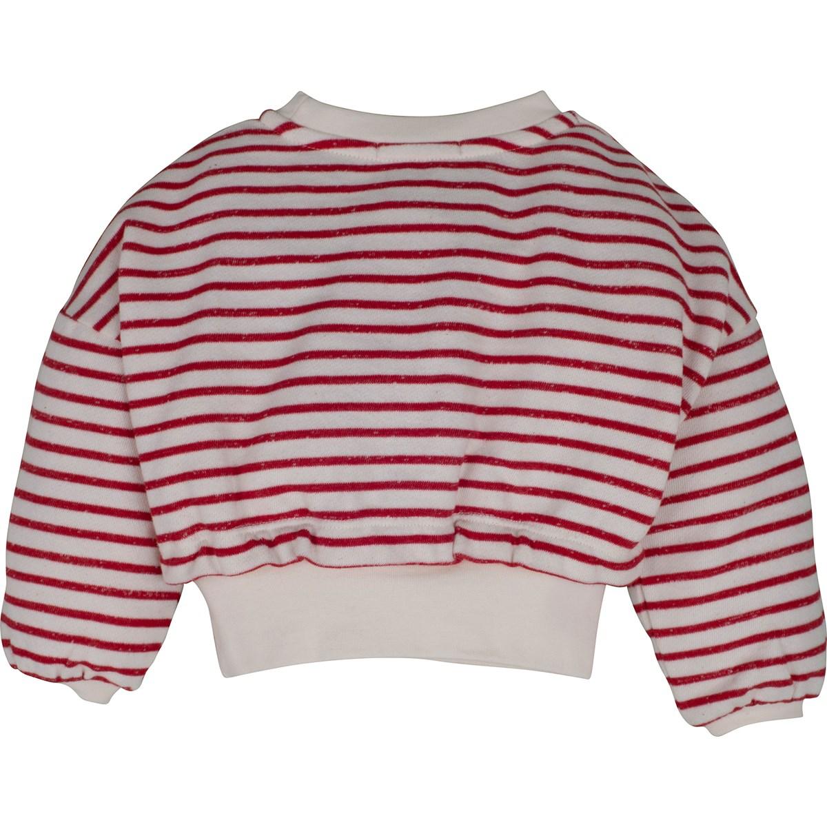14176 Sweatshirt 2